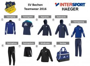 sv-bechen-2016-bestellzettel
